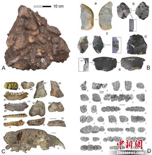 Chinese researchers discover 300,000-year-old.jpg