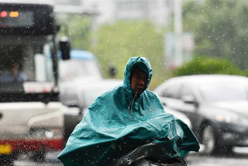 Rainfall hits China's Tianjin