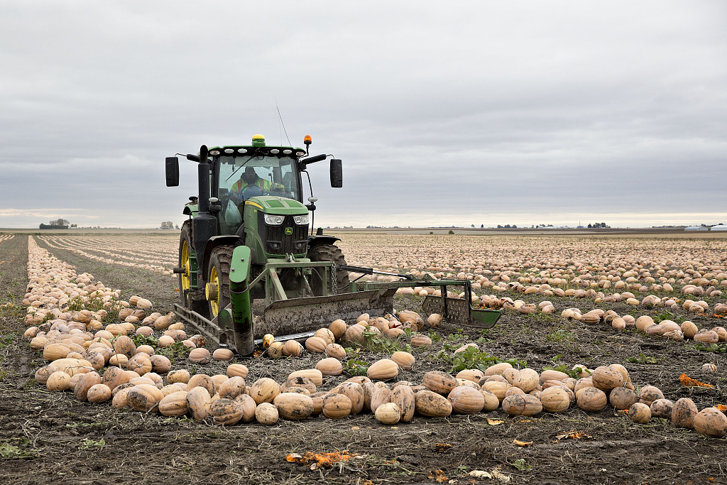 Trade tensions frustrating US farmers
