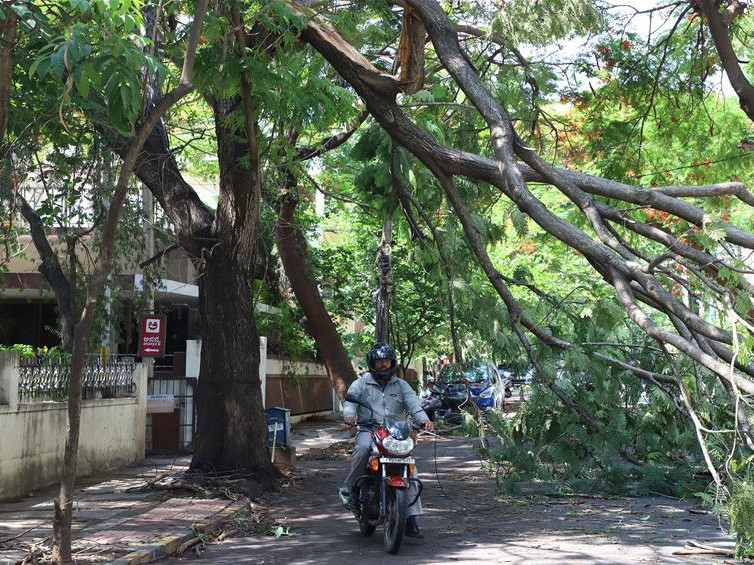 Aftermath of heavy rainfall and thunderstorms in Bangalore, India