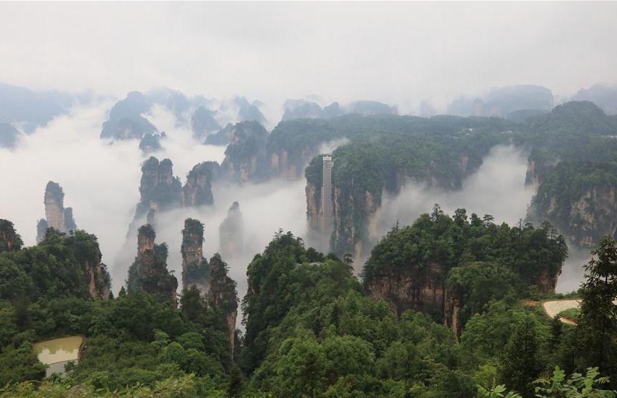 World's highest outdoor elevator shrouded by fog in Zhangjiajie, C China
