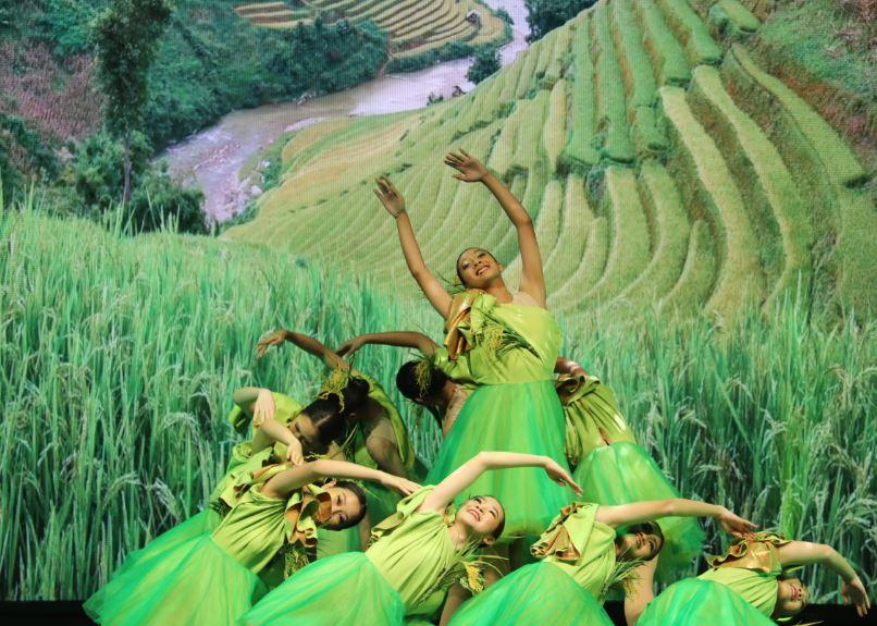 Rice convention showcases quality Thai rice