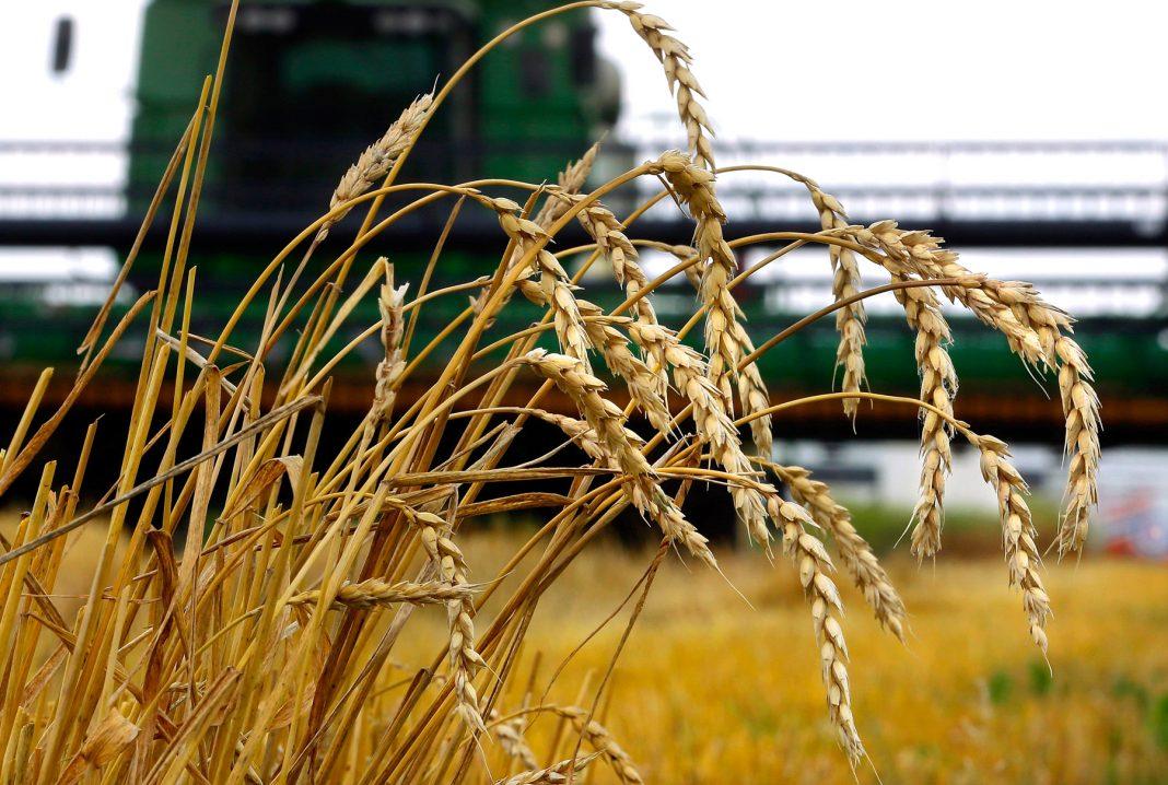 US farmers AP image.jpg