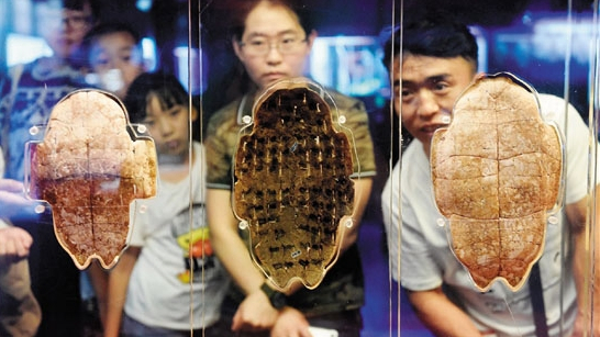 China to commemorate 120th anniversary of oracle bone inscription discovery