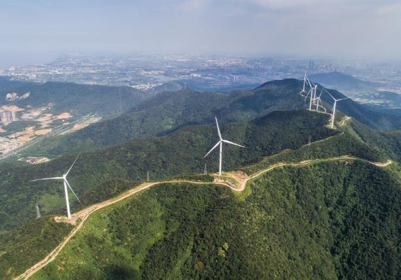 China echoes UN's environmental call with green drives