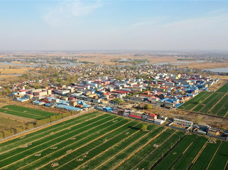 Chief justice stresses better judicial service for Xiongan New Area
