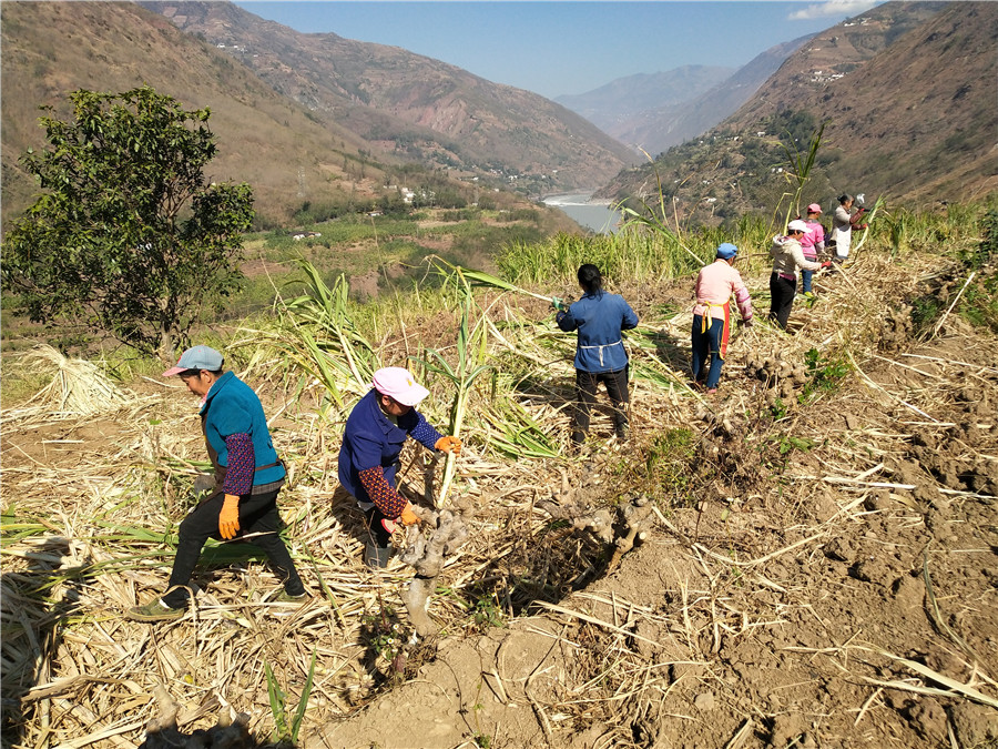 'Intensify' governing efforts in rural areas