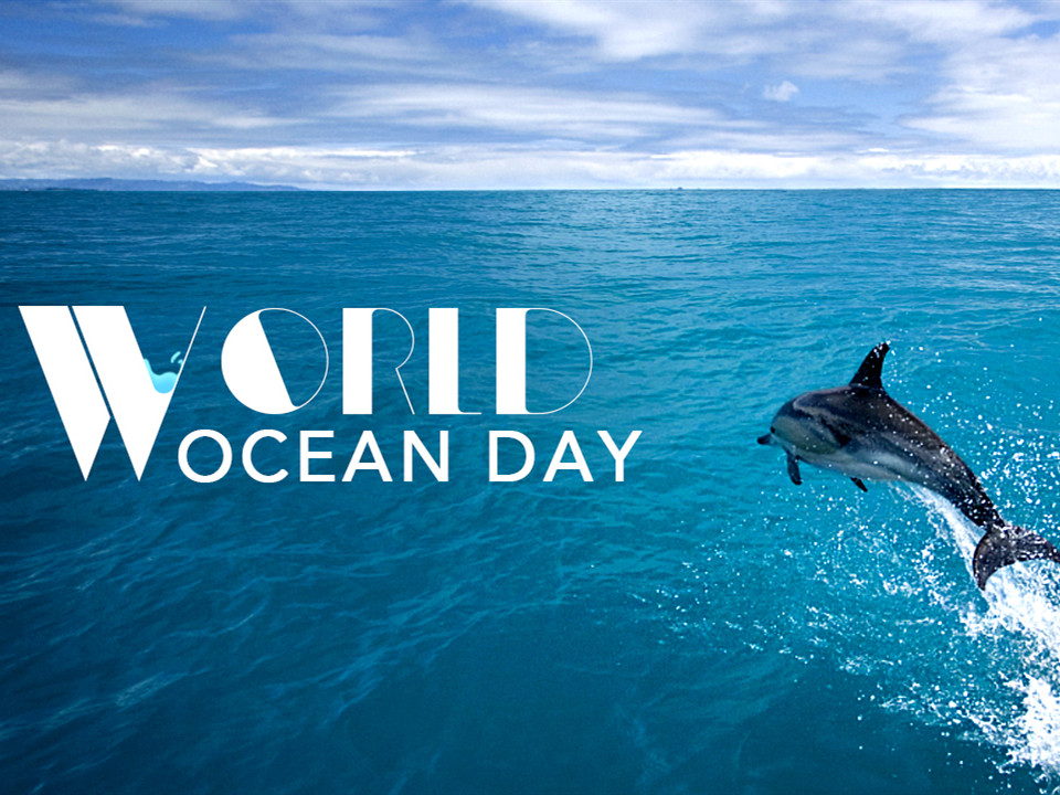 World Ocean Day: Living on a blue planet