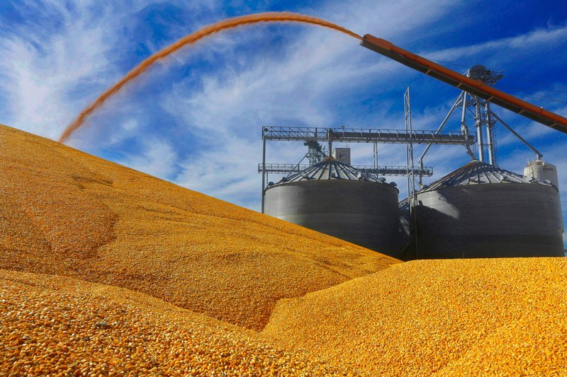 US corn, soybeans end week lower on trade tensions, improved weather