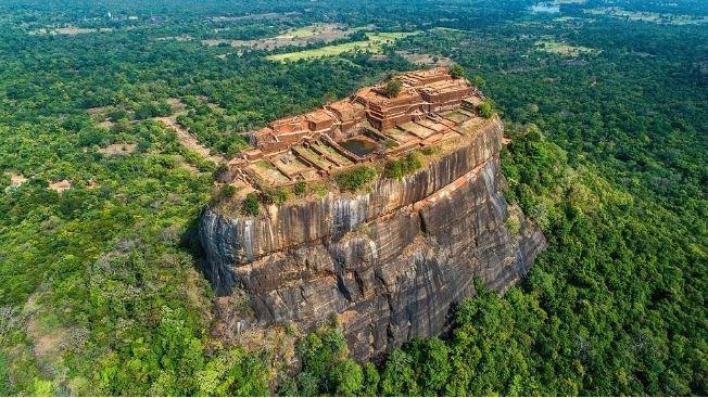Sri Lanka to ban chainsaws, timber mills: president