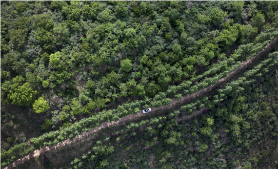 Ecosystem protection benefits 1.4 mln poor people in NW China province