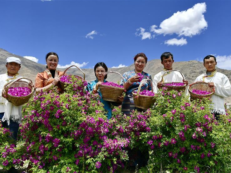 A rural tourist destination in China's Tibet