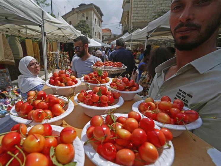 Cherry Day in Hamana, Lebanon