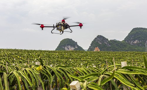 AI, drone technology transform China's agri-business, launching it into the future of modern farming