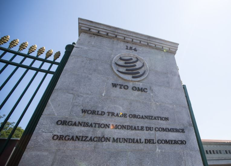 Trade restrictions among G20 continuing at historic high levels: WTO