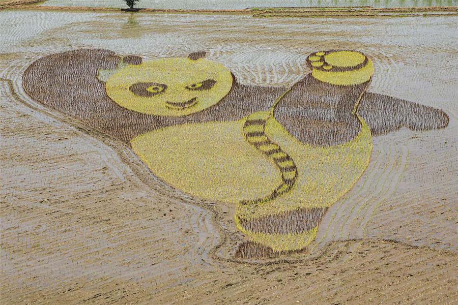 Paddy field art celebrates National Land Day