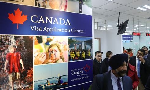 Chinese applicants for Canada visas plummet amid diplomatic tensions