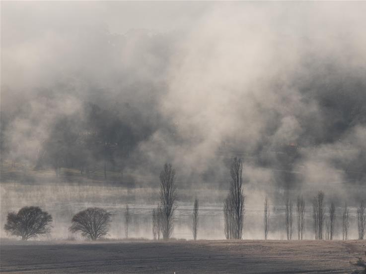 Fog scenery in Canberra, Australia