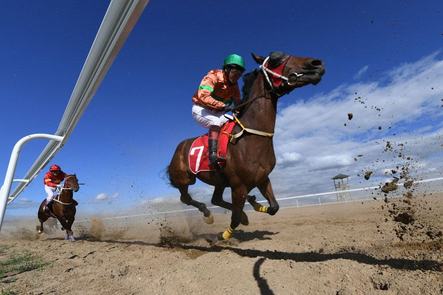 Equestrian festival opens in Inner Mongolia
