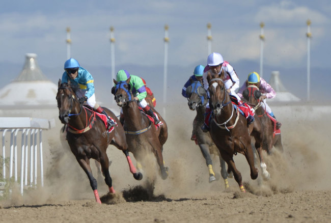 International equestrian festival kicks off in Northern China