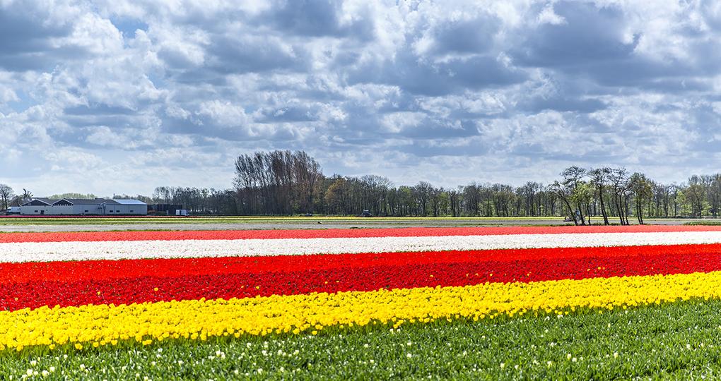 Warmest June ever measured in Netherlands