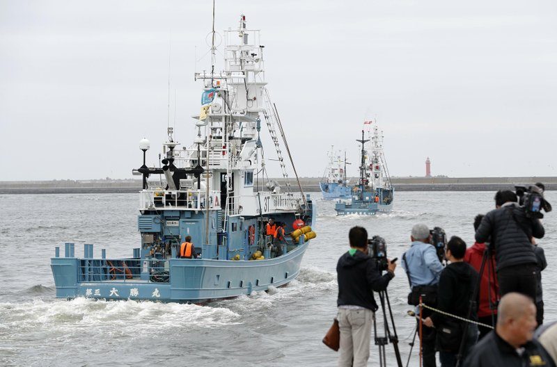 Japan resumes commercial whaling despite low demand