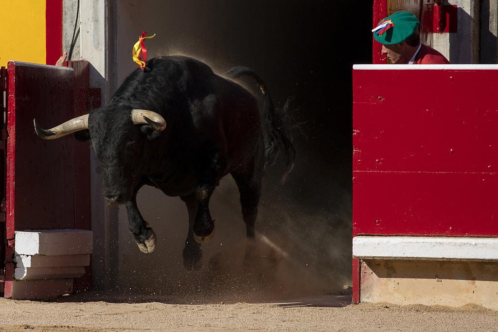 Spain's running of the bulls festival kicks off in Pamplona